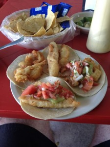 best shrimp tacos playa del carmen