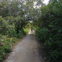 playa del carmen bike trails