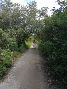 playa del carmen bike trails