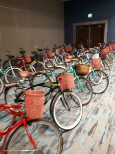 Bike Rentals In Playa del Carmen